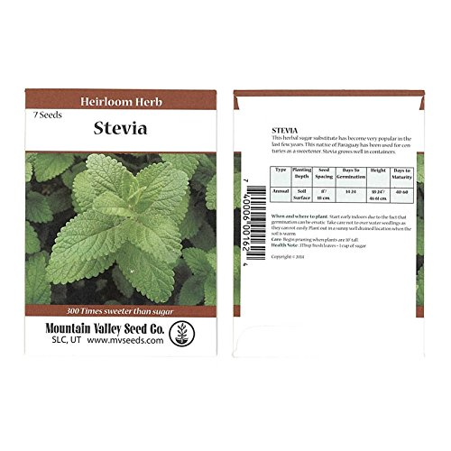 Stevia Sweet Herb Plant Seeds - 7 Seed Packet - Non-GMO, Heirloom Herbal Garden...