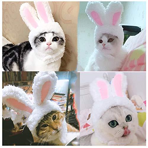Cuteboom Cat Rabbit Hat Kitty Bunny Costume Small Cat Easter Costume Small Pet Halloween Birthday Cap(Rabbit)