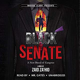 Black Senate audiobook cover art