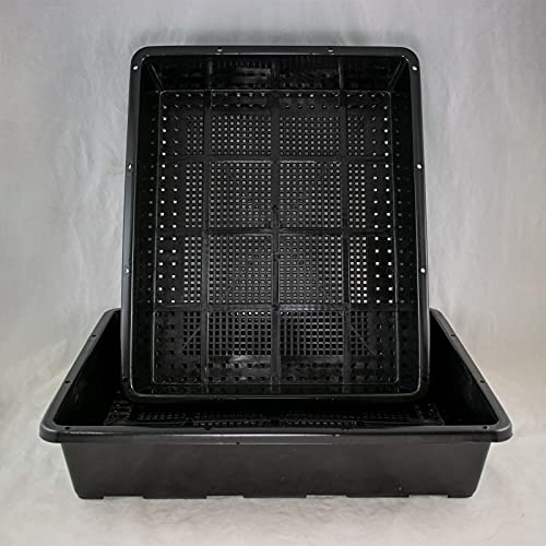 2 x Black Plastic Tray for Propagation, Bonsai Forest/Group Planting 15'x 12'x 3'