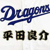 中日 ドラゴンズ 刺しゅう ワッペン 平田 名前 [BK] 平田良介