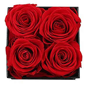 rose gifts for her birthday gifts forever preserved fresh cut roses, handmade eternal roses in a box that last a year, best gifts for women her valentines day mothers day anniversary (4 roses) silk flower arrangements