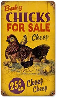 Old Time Signs Chicks for Sale Metal Sign Wall Decor 8 x 14