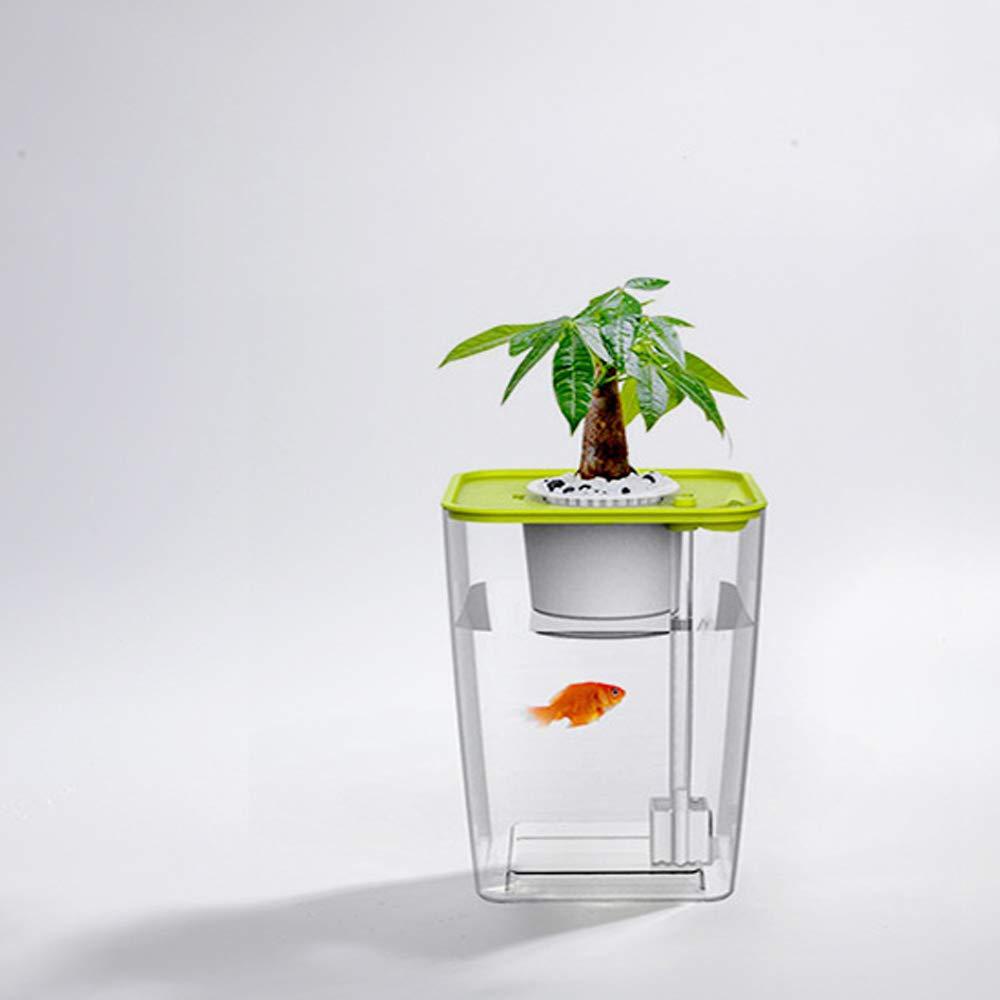 ZDJR Jardín hidropónico Tanque de Peces acuaponico Plantas Sistema de Cultivo Bandeja de germinación de Semillas autolimpiante,Verde: Amazon.es: Hogar