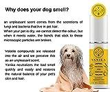 Profumo Naturale per Cani - con Odore di agrumi Fresco e neutralizzare l'odore sgradevole....