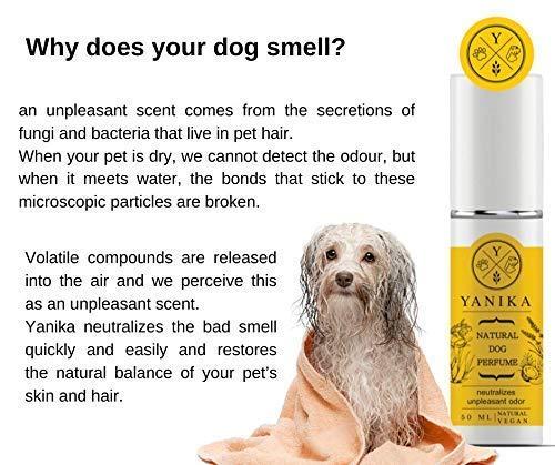 Yanika Perfume Natural para Perros - neutralizar Olor desagr