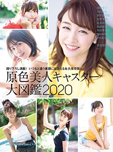 原色美人キャスター大図鑑2020 (文春e-book)