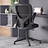 Reyade Office Chair Ergonomic Desk Chair Home Mesh Computer Task Chair with Flip-up Arms Lumbar Support and Adjustable Height, Black