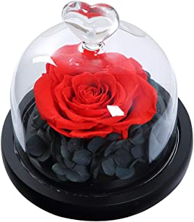 ANLUNOB Handmade Enchanted Rose Forever Rose – Anniversary Day Gift Preserved Rose – Birthday Gift Fresh Flowers - Beauty ad The Beast Rose for Girlfriend