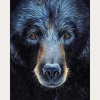 N  A 5D DIY Diamond Painting Black Bear Diamond Painting Kits for Adults Crystal Rhinestone Embroidery-16x20 in