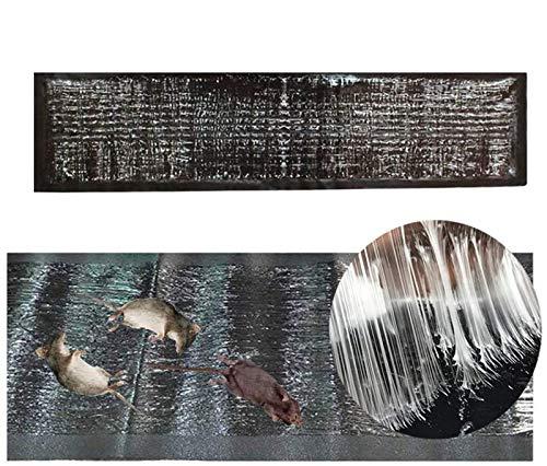 Feilium Ratten-Sticky-Pads-Falle, Mäusefallen-Mausbrett, Klebefallen für Mäuse Sticky-Mouse-Pads, Insektenfänger-Sticky-Leim-Fallen für den Innen- und Außenbereich