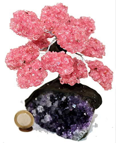 Marcopolo Gems 15 Pétalo de Cuarzo Rosa Árbol de Piedras Preciosas agrupado en Matriz de Cuarzo Claro (El árbol de los bonsais de relajación)