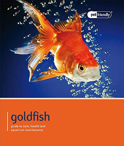 Goldfish (Pet Friendly)