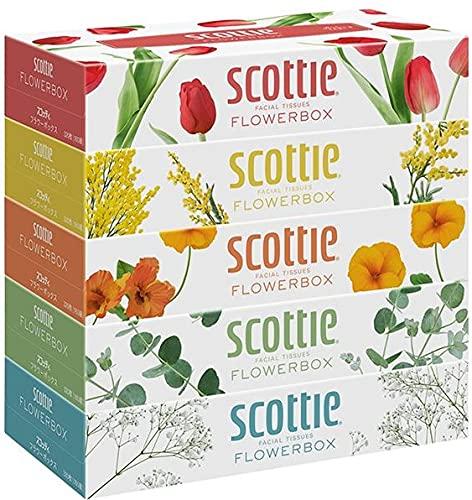日本製紙クレシア スコッティ (SCOTTIE) ティッシュペーパー フラワーボックス 320枚(160組)5箱×12パック(60箱) 41270*12