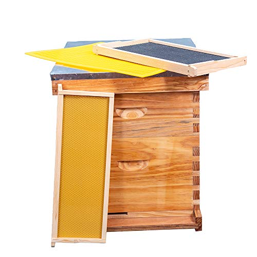 Honey Lake 8 Frame Bee Hive 1 Brood Beehive Box and 1 Medium Super Box, Bee Hives and Supplies Starter Kit Include Beehive Frames and Foundation Sheet
