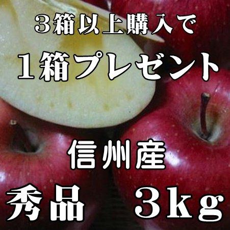 サンふじりんご 3kg 6玉〜12玉 秀品 信州産 お歳暮 人気 長野サンふじりんご
