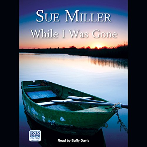 While I Was Gone audiobook cover art