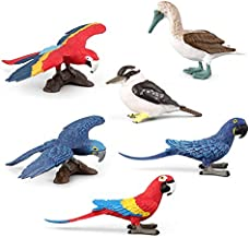 Warmtree Simulated Macaws Kingfisher Blue-Footed Booby Model Realistic Plastic Parrot Figurines Bird Action Figure for Kids' Collection Science Educational Toy, Set of 6
