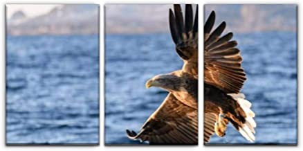 Modern Canvas Painting White tailed eagle or sea eagle fisihing in a Fjord in Northern Norway Wall Art Artwork Decor Print...