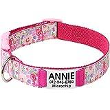 Vcalabashor Collar de Perro Personalizado, Placa de Acero Inoxidable grabada con Nombre y Número de Teléfono del Perro,Pink Grande