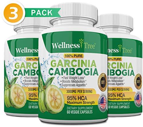 Garcinia Cambogia Extract - 95% HCA 3000mg Maximum Strength Capsules - Best Weight Loss Supplement - Burn Fat & Boost Metabolism, Diet Pills for Men & Women - 3 Pack