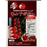 ロッソナポリタン パイオニアエコサイエンスのミニトマト種子です