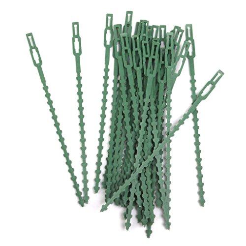 shangmu Lot de 30 en Plastique réutilisable câble Zip Fil Tie Support tomates, poivrons, Vigne Plantes et Fleurs de développement Droit