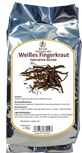 Weißes Fingerkraut Wurzel - (Potentilla alba)