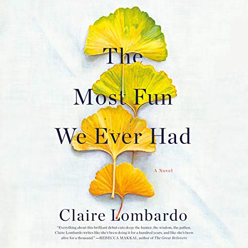 The Most Fun We Ever Had audiobook cover art