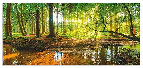 Artland Spritzschutz Küche aus Alu für Herd Spüle 55x120 cm Küchenrückwand mit Motiv Natur Landschaft Wald Bäume Sonne Bach Landhaus Grün T9IO