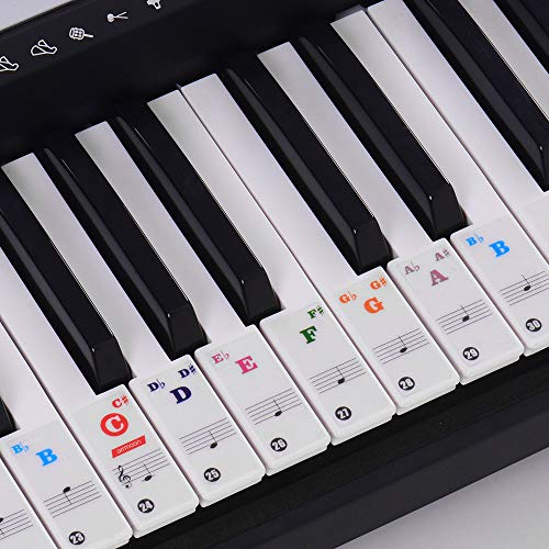 ammoon Piano Keyboard Stickers for 37/49/61/88 Key Keyboards Removable Transparent for Kids Beginners Piano Practice Learning - Colored