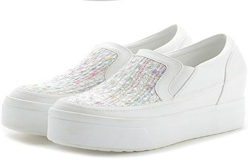 HBDLH Chaussures pour Femmes Les Souliers Au Fond du Gateau.