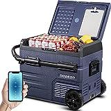 BODEGA 45L Nevera Auto 12V congelador portatil -20℃-20℃ camion frigorifico Playa Camper Nevera portatil con Ruedas pequeña electrica