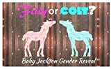 234Tiffany Fun Filly or Colt Gender Reveal Watercolor Wood Plaque 5.5 x 17 inches.
