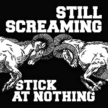 Stick At Nothing