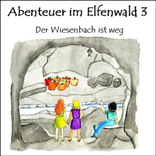 Der Wiesenbach ist weg Titelbild