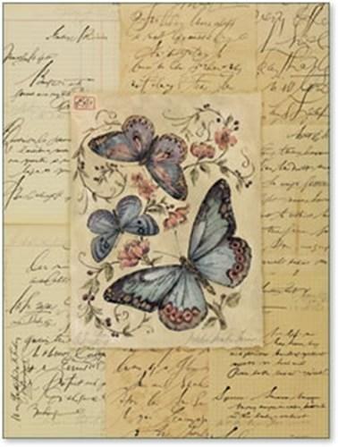 Price comparison product image Martha Newton Furman - Botanique Butterfly II Art Print NO LONGER IN PRINT - LAST ONE!!