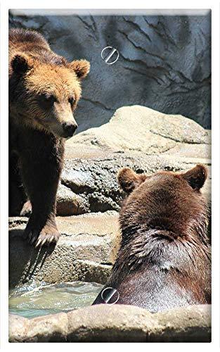 Single-Gang Blank Wall Plate Cover - Brown Bears Bears Exhibit Zoo Wild Bear Brown