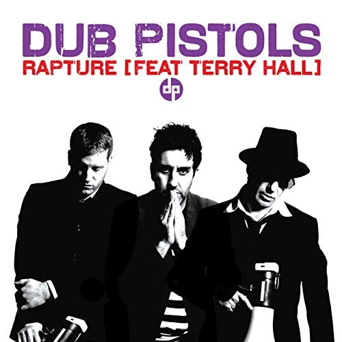 The Dub Pistols feat. Terry Hall