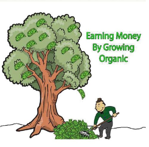 Green Business Secrets: Starting Your Own Venture in Growing Organic Food