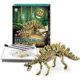 Dinosaur Skeleton 3D Dig a Dino Fossil Bones DIY Excavation Science Education Kit - Stegosaurus