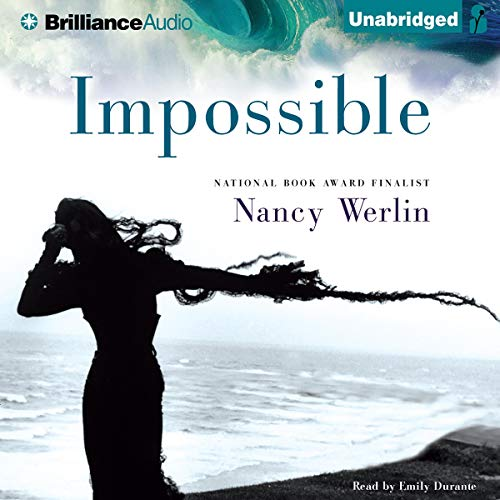 Impossible Audiobook By Nancy Werlin cover art