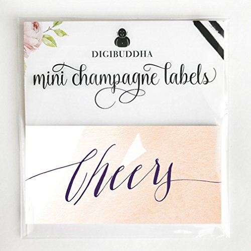 """Cheers 20 Count Mini Champagne & Mini Wine Bottle Decals, All Occasion Pink Watercolor Label for Bat Mitzvah, Sweet 16, 21st Birthday, Engagement, Bachelorette or Hen Party, 3.5"""" x 1.75"""" Gift Labels"""