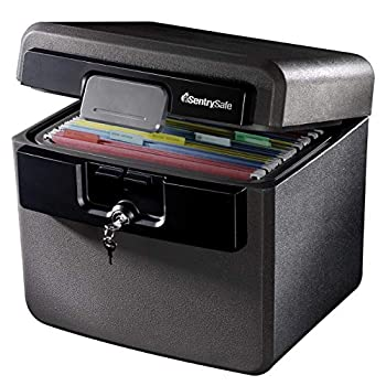 SentrySafe HD4100 Fireproof Safe and Waterproof Safe with Key Lock 0.65 Cubic Feet  black