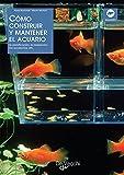 Cómo construir y mantener el acuario
