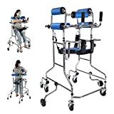 XIYEE Walker for Seniors,Hemiplegia Rehabilitation Standing Frame Adult Walker Walking Aid for The Disabled, Portable Medical Walker with Adjustable Height, Suitable for People of 150-180 cm