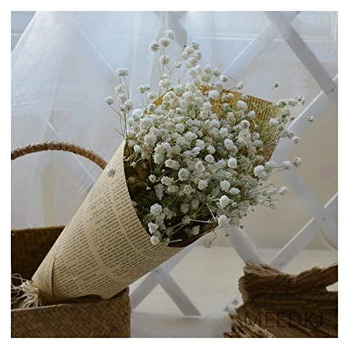 TZZD Trockene Blumen 5-Farben-natürliche getrocknete Blumen, Baby-Stern, Bunte Haus Display Blumen, Schießen Requisiten, Blumen und Zeitung (Farbe : Weiß)