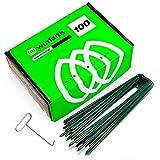 Winfaith Piquetas Verdes Piezas 100 Made in Italy en Acero EN 10204 3.1 Galvanizado en Caliente - Antióxido Jardín Césped Sintético Anclaje - Medidas mm H150 x L30 x D3