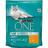 Purina One Bifensis Crocchette Gatto Adult Ricco in Pollo e Cereali integrali - 8 Sacchi da 800 g Ciascuno