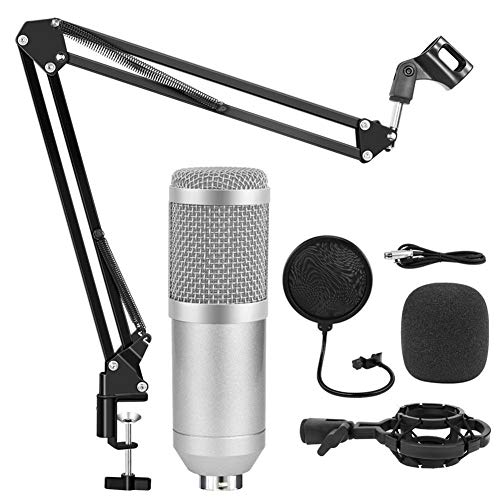 ZHHO Studio-Mikrofon Kondensator Gesang Rekord KTV Karaoke Microfono for Radio-Braodcasting Mikrofonhalter Singen (Color : Silver Kit A)